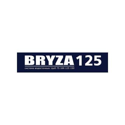 BRYZA 125